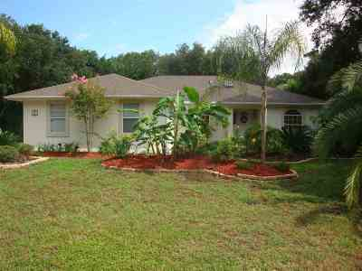 St Augustine Single Family Home For Sale: 411 Fifth St.