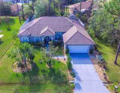 Palm Coast Single Family Home For Sale: 38 White Hall Dr