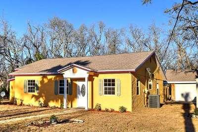 Palm Coast Single Family Home For Sale: 19 First Avenue