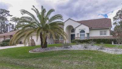 Palm Coast Single Family Home For Sale: 3 Waywell Pl