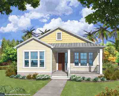 Palm Coast Single Family Home For Sale: 42 Sandy Beach Way