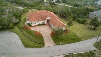St Augustine Single Family Home For Sale: 141 Pelican Reef Drive