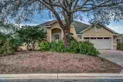 St Augustine Single Family Home For Sale: 984 Fish Island Place