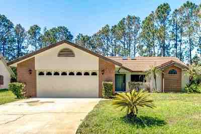 Palm Coast Single Family Home For Sale: 23 Providence Lane