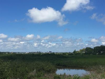 Residential Lots & Land For Sale: Spartina Avenue