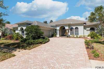 Palm Coast Single Family Home For Sale: 43 Eastlake Drive