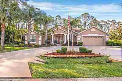 Palm Coast Single Family Home For Sale: 15 Elder Drive