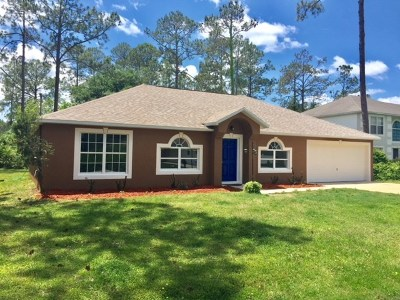 Palm Coast Single Family Home For Sale: 20 Ryarbor Lane
