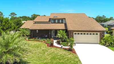 Palm Coast Single Family Home For Sale: 29 Cheyenne Court