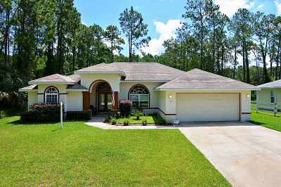 Palm Coast Single Family Home For Sale: 28 Rybar Lane