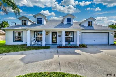 Palm Coast Single Family Home For Sale: 94 Laramie Drive