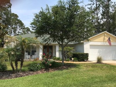 Palm Coast Single Family Home Conting_accpt Backups: 19 Eagle Crest Path