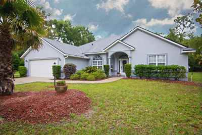 St Augustine Single Family Home For Sale: 3381 Kings Road South