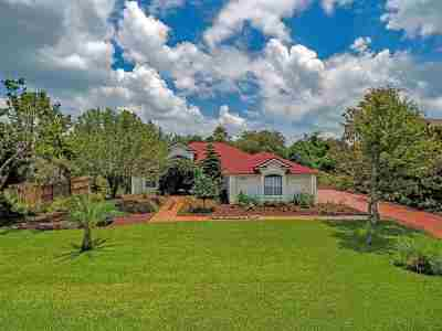 St Augustine Single Family Home For Sale: 434 Marsh Point