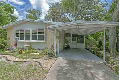 St Augustine Single Family Home For Sale: 80 Barbarosa Street