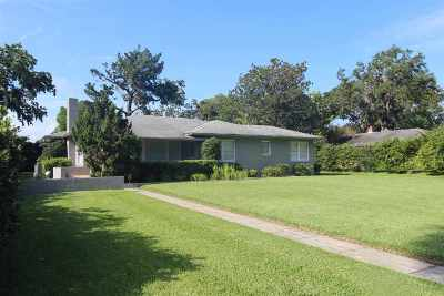 St Augustine Single Family Home For Sale: 41 Carrera Street
