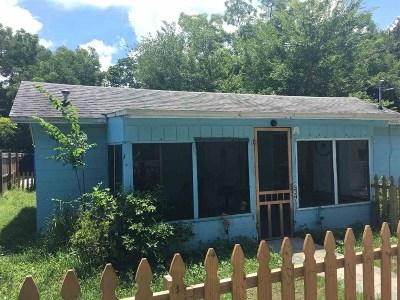 St Augustine Single Family Home For Sale: S 205 Nassau Street