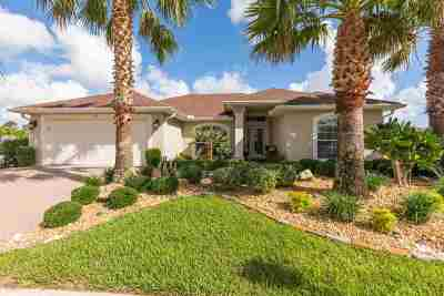 Palm Coast Single Family Home For Sale: 191 Arena Lake Dr.