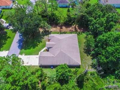 Palm Coast Single Family Home For Sale: 16 Royal Leaf Ln