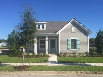 St Augustine Single Family Home For Sale: 42 Patina Pl