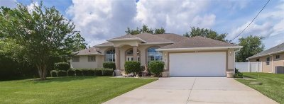 Palm Coast Single Family Home For Sale: 57 Butterfield Dr