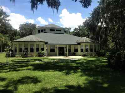 St Augustine FL Single Family Home For Sale: $1,695,000