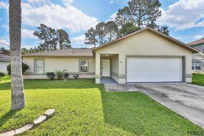 Palm Coast Single Family Home For Sale: 79 Raintree Place