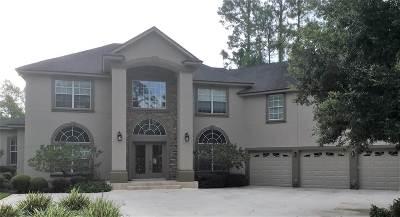 St Augustine Single Family Home For Sale: 2498 Den Street