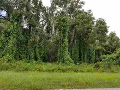 Crescent City FL Residential Lots & Land For Sale: $20,000