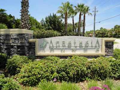 Anastasia Dunes Residential Lots & Land For Sale: 358 Ocean Forest Dr