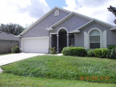 Single Family Home For Sale: 185 Marsh Island Cir
