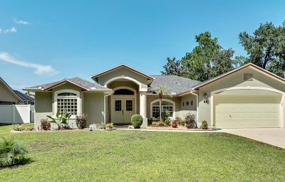 Palm Coast Single Family Home For Sale: 46 Bickford Dr
