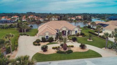 Palm Coast Single Family Home For Sale: 20 San Gabriel Ln