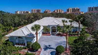 Palm Coast Single Family Home For Sale: 12 Avenue Monet