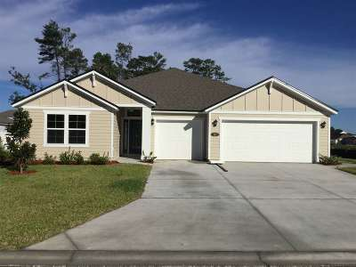 St Augustine Single Family Home For Sale: 131 Trianna Dr