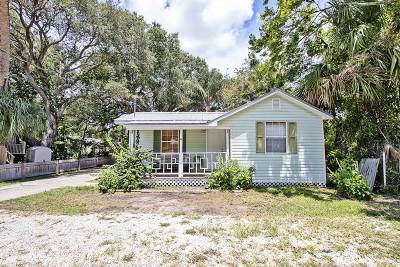 St Augustine Single Family Home For Sale: 480 Lena St