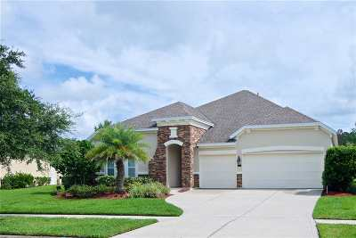 Ponte Vedra Single Family Home For Sale: 129 Majestic Eagle