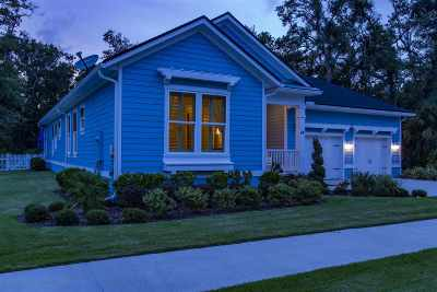 Palm Coast Single Family Home For Sale: 54 Hidden Treasure Drive