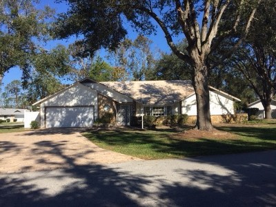 Palm Coast Single Family Home For Sale: 89 Westfield Lane