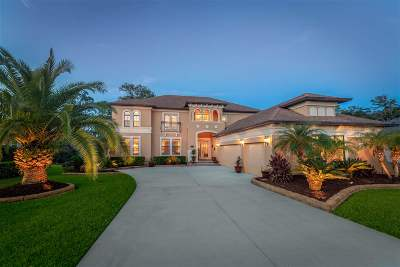 St Augustine Single Family Home For Sale: 387 Gianna Way