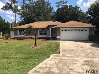 Palm Coast Single Family Home For Sale: 11 Ryapple Lane