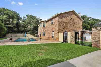 St Augustine Single Family Home For Sale: 603 Kettner Court