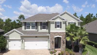 St Augustine Single Family Home For Sale: 102 Medio