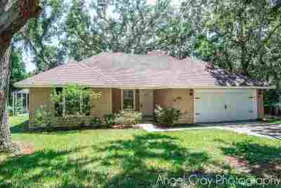St Augustine Single Family Home For Sale: 425 Ocean Drive