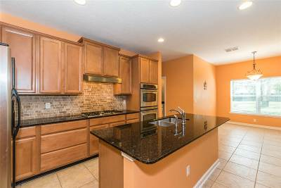 St Augustine Single Family Home For Sale: 3841 Paddington Place