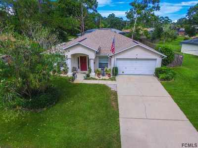 Palm Coast Single Family Home For Sale: 21 Webster Ln