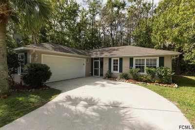 Palm Coast Single Family Home For Sale: 56 Edwards Dr
