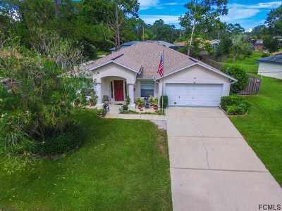 Palm Coast Single Family Home For Sale: 264 Beechwood Ln
