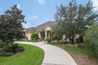 Single Family Home For Sale: 176 Herons Nest Ln.