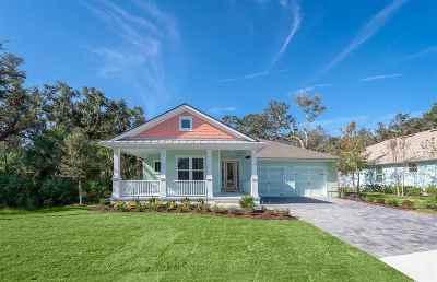 Palm Coast Single Family Home For Sale: 19 Turtle Beach Drive